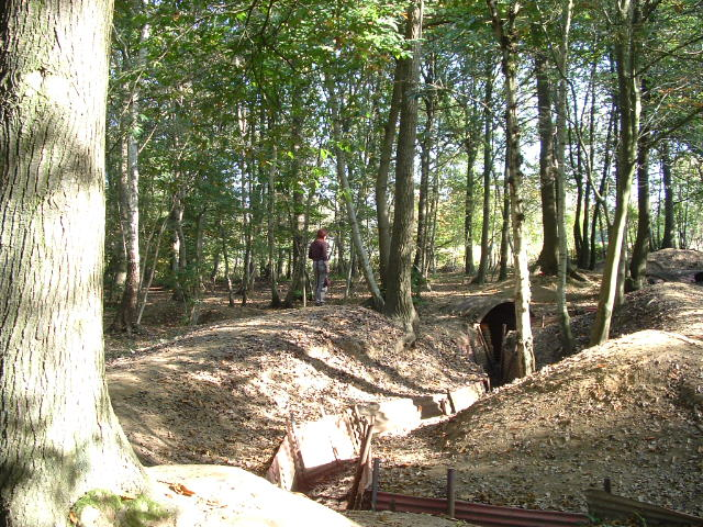 Hill 62 Trenches